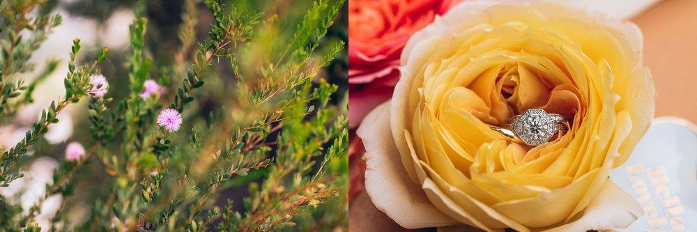 SanLuisObispoWeddingPhotographer_0118.jpg
