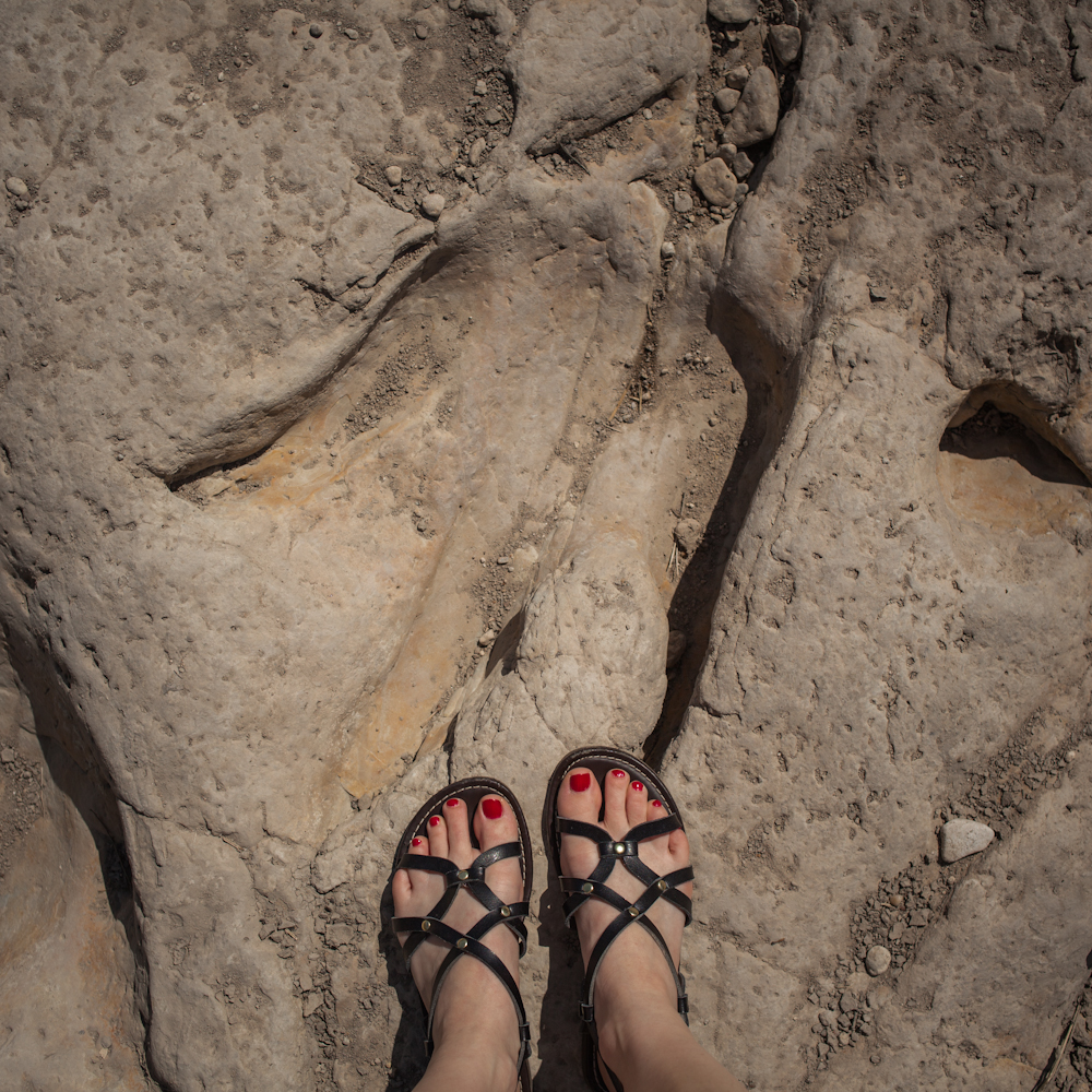 Glen Rose dinosaur footprint