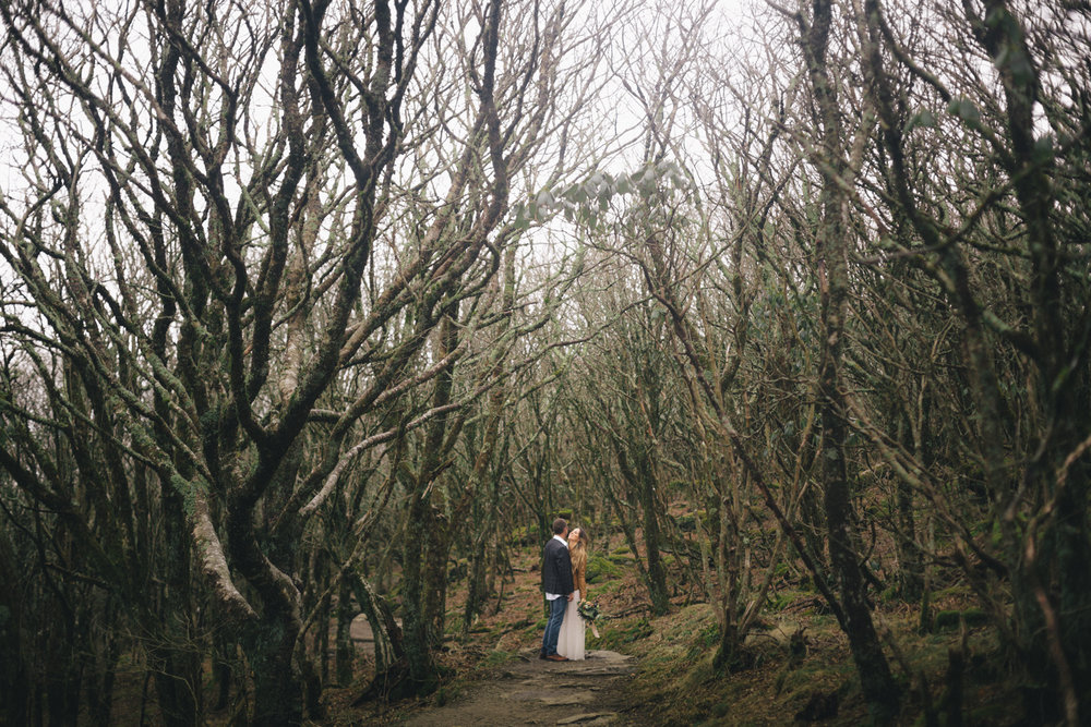 Bride and groom in the woods of the Blue Ridge Parkway.