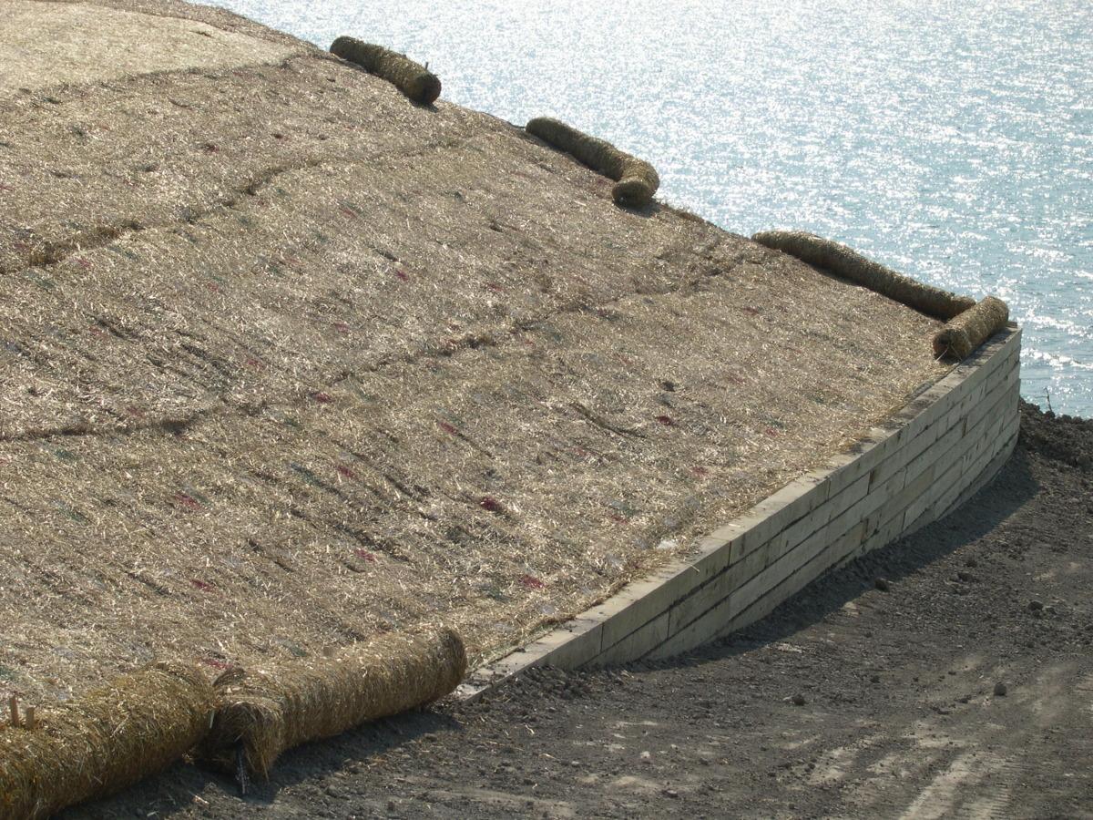 lake mi erosion control.jpg