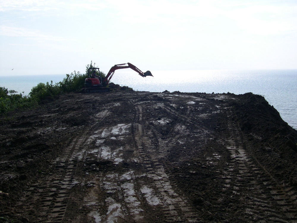 reclaiming a bluff on lake michigan.jpg