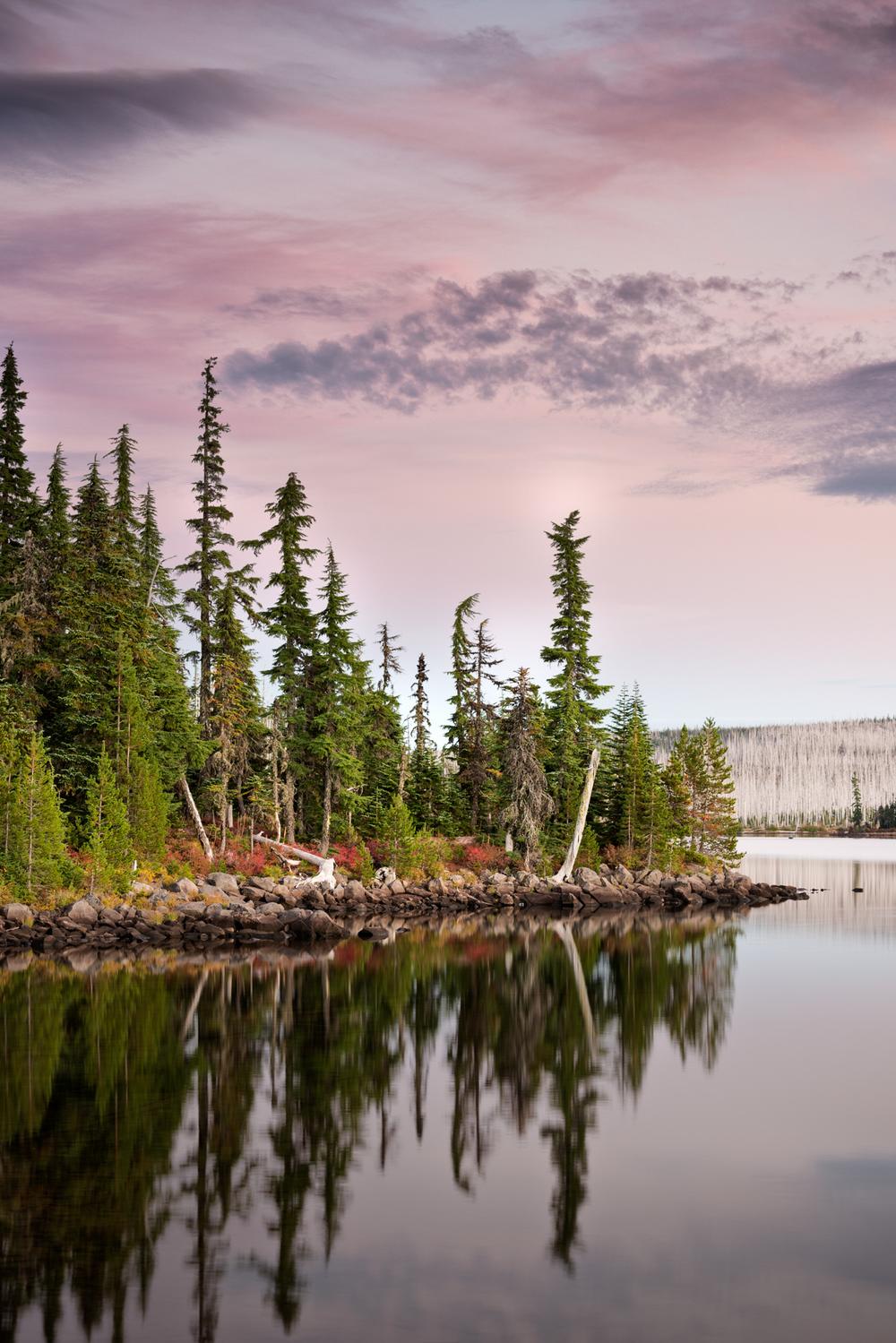Ollalie Lake-7.jpg