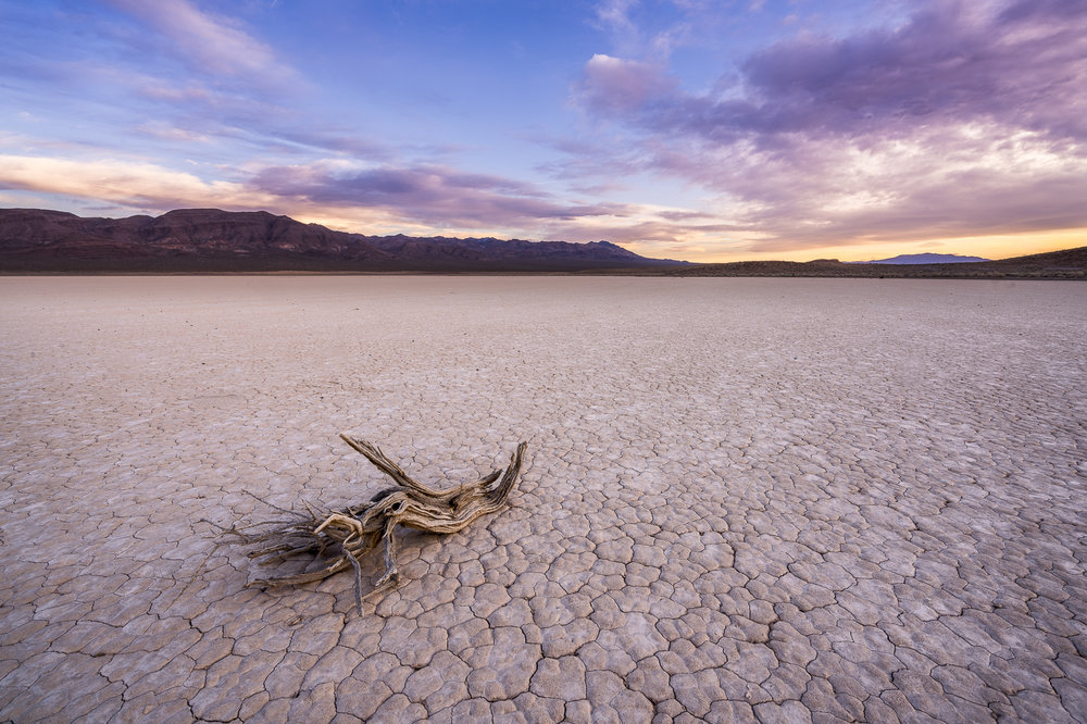 Bonnie Claire Playa, Death Valley
