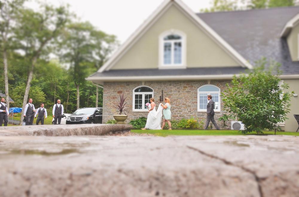 wedding scene.jpg