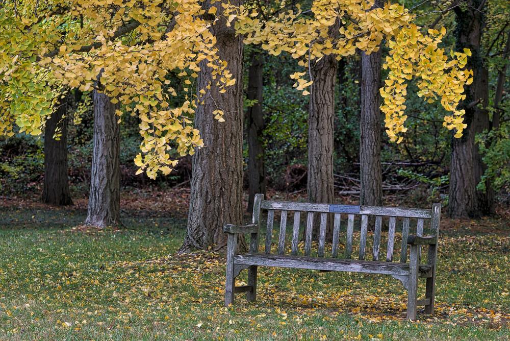 2014-10-22_Blandy_Booker_0040.jpg