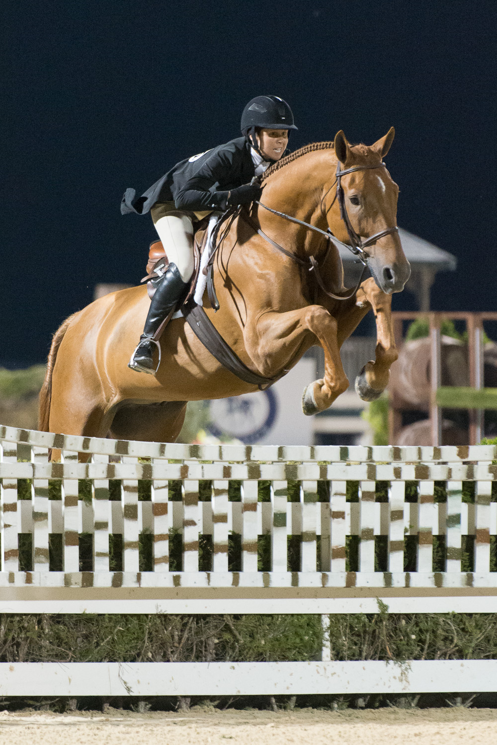 Brunello and Liza Boyd on the way to victory in the 2013 USHJA International Hunter Derby Championship.