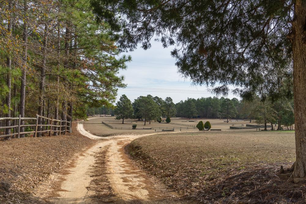 South Carolina-00183.jpg
