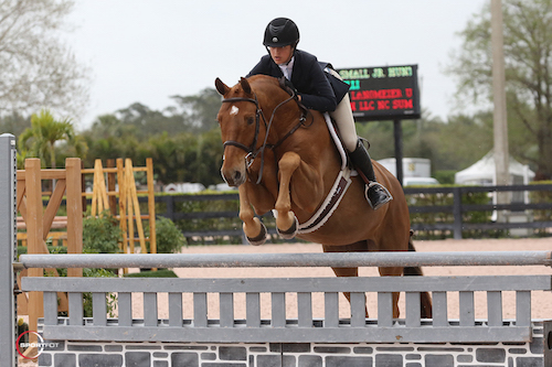 McKayla Langmeier and Khaki Run LLC's Castelli