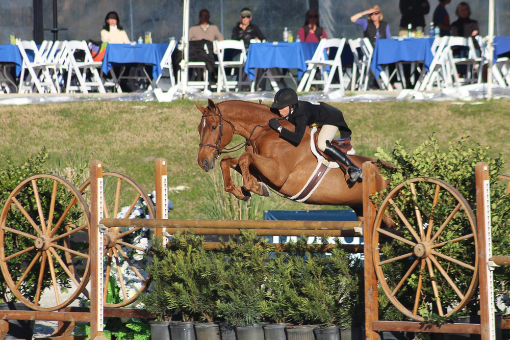 Liza Boyd and Brunello in the $100,000 USHJA International Hunter Derby at HITS Ocala (TK Themaneimagephotography)