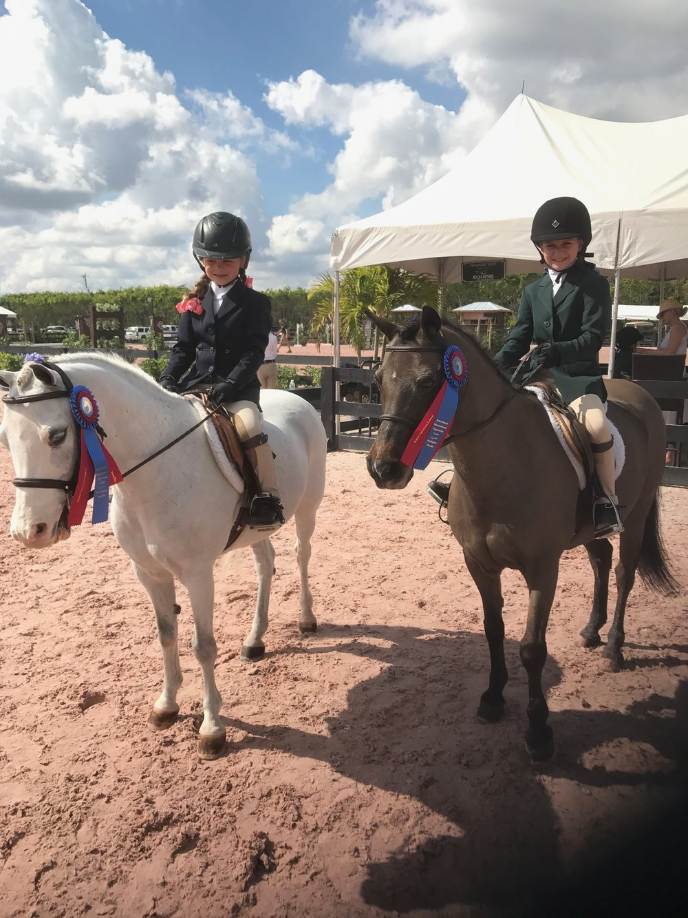 Elle Boyd, left, and Mary Jo Serio shared blue-ribbon rewards in the Short Stirrup section.