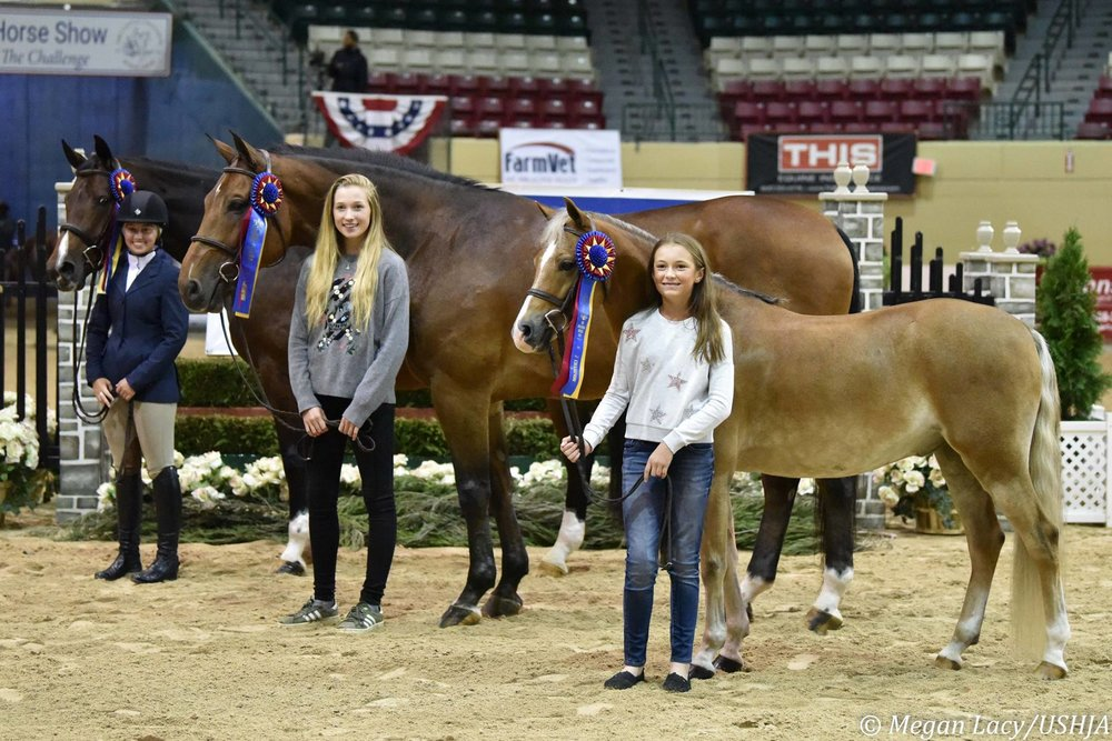 Maggie Hill, center, WCHR Southeast Regional Junior Champion