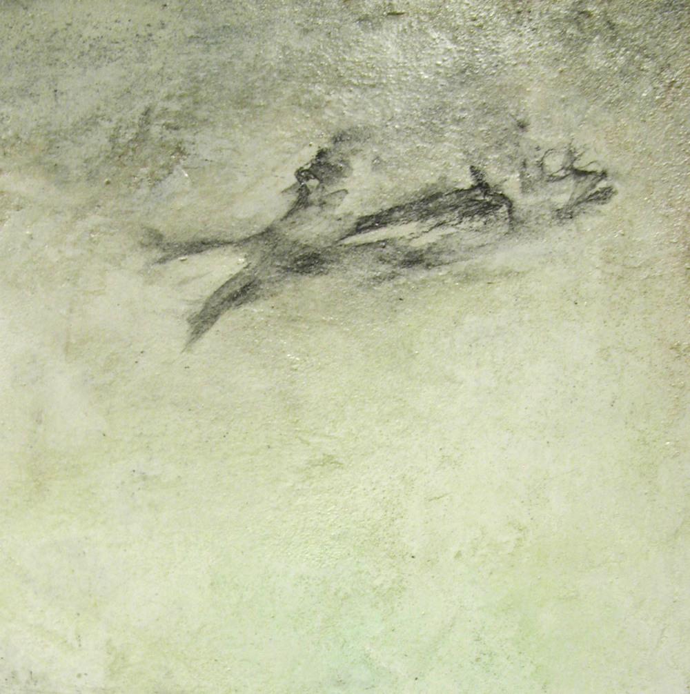 Fish, Detail