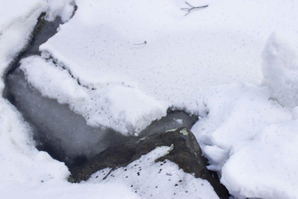 Ice Mink Brook 1
