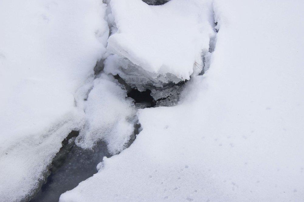 Ice Mink Brook 2