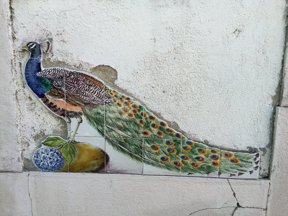 Another tiled vignette in Alfama...