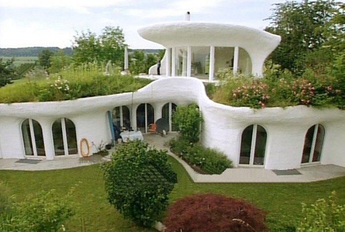 green roof house (2).jpg