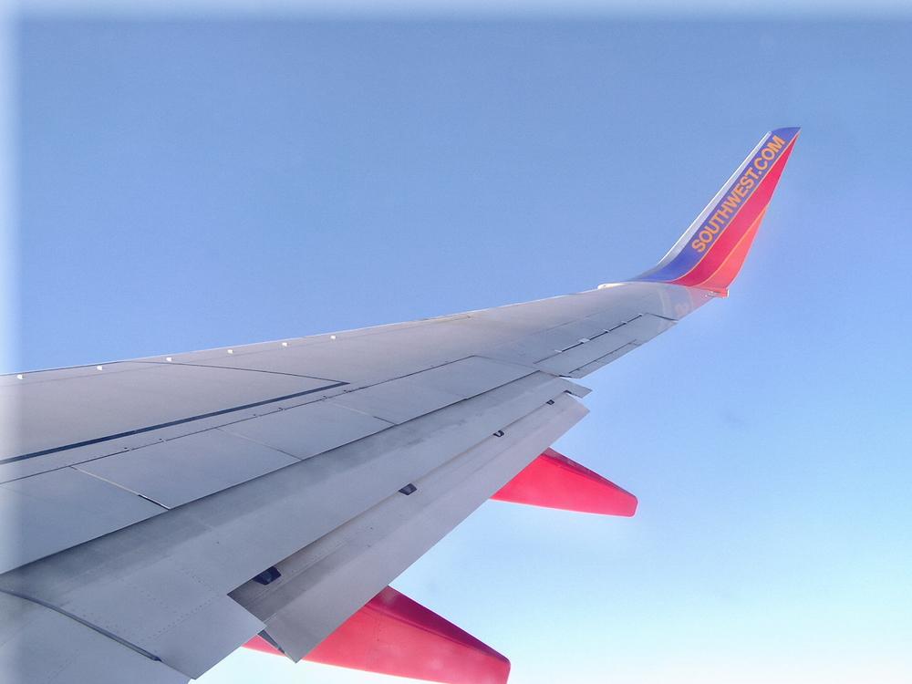 Airplane_Wing.jpg
