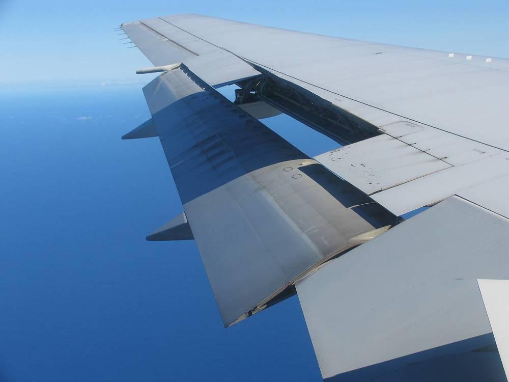 wings-blue.jpg
