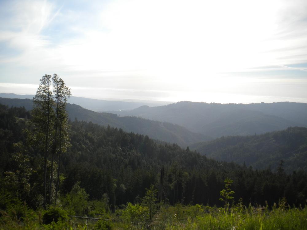 Humboldt County, CA