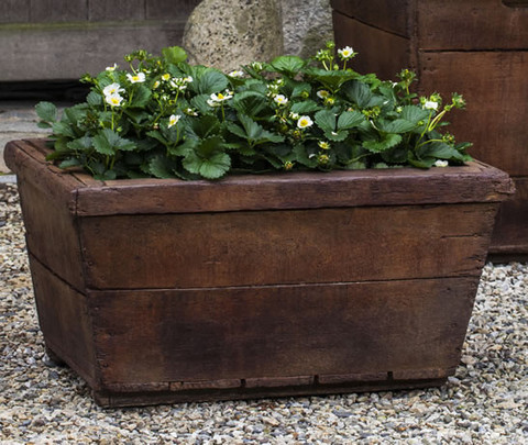 Low Vendange Planter