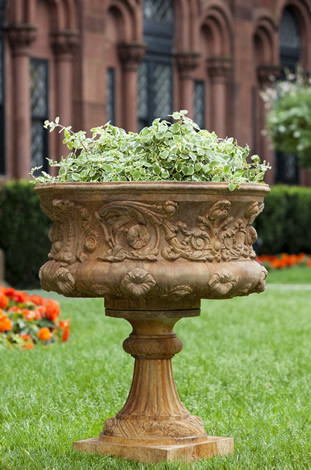 Smithsonian Morning Glory Urn $825