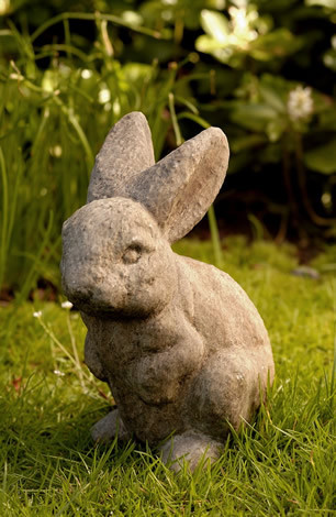 Rabbit Ears Up