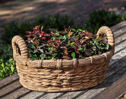 Provencal Basket Planter $130