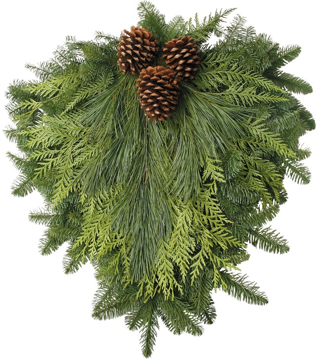 Traditional Door Swag - This attractive Noble Fir Swag is a combination of Western Red Cedar, Princess Pine, and Ponderosa Pine cones. Approximately 26