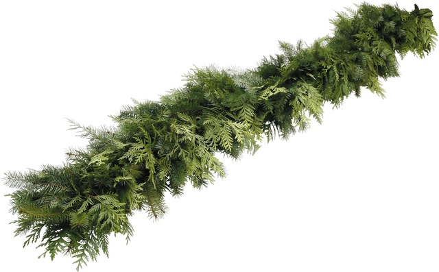 Mixed Garland - A mixture of Douglas Fir and Western Red Cedar intertwine to create this attractive and aromatic garland. Approximately 25