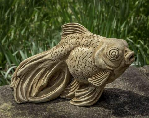 Ornamental Goldfish