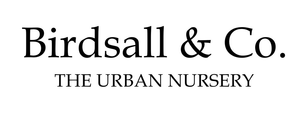 LOGO - Urban Nursery.jpeg