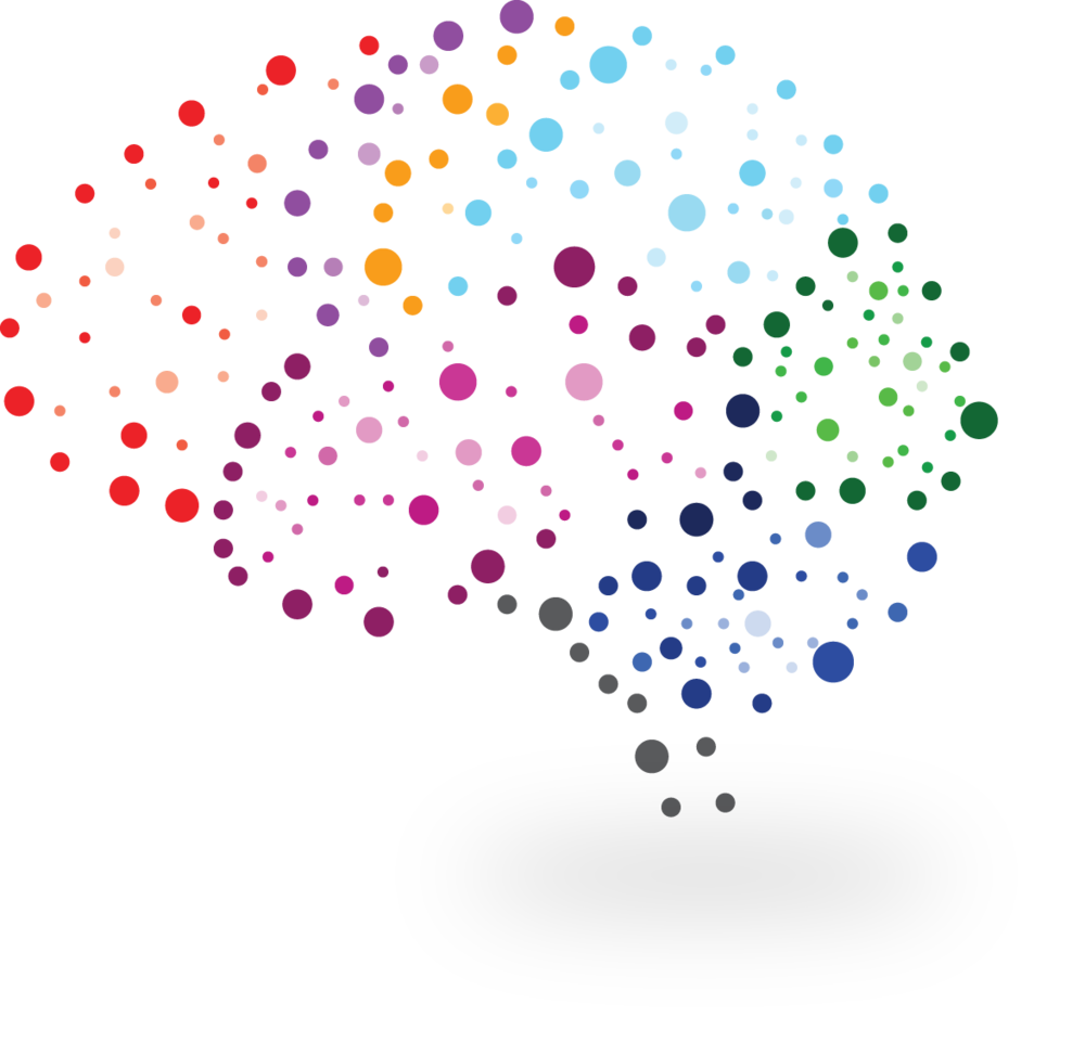 brain image.png