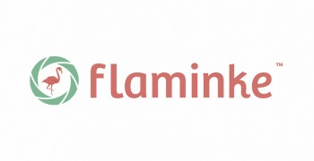 Flaminke logo.jpg