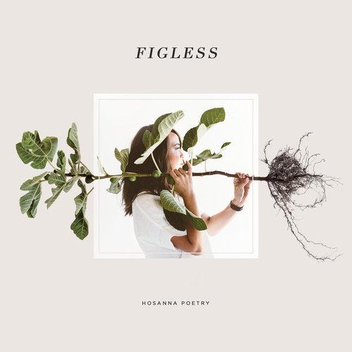 FIGLESS ALBUM