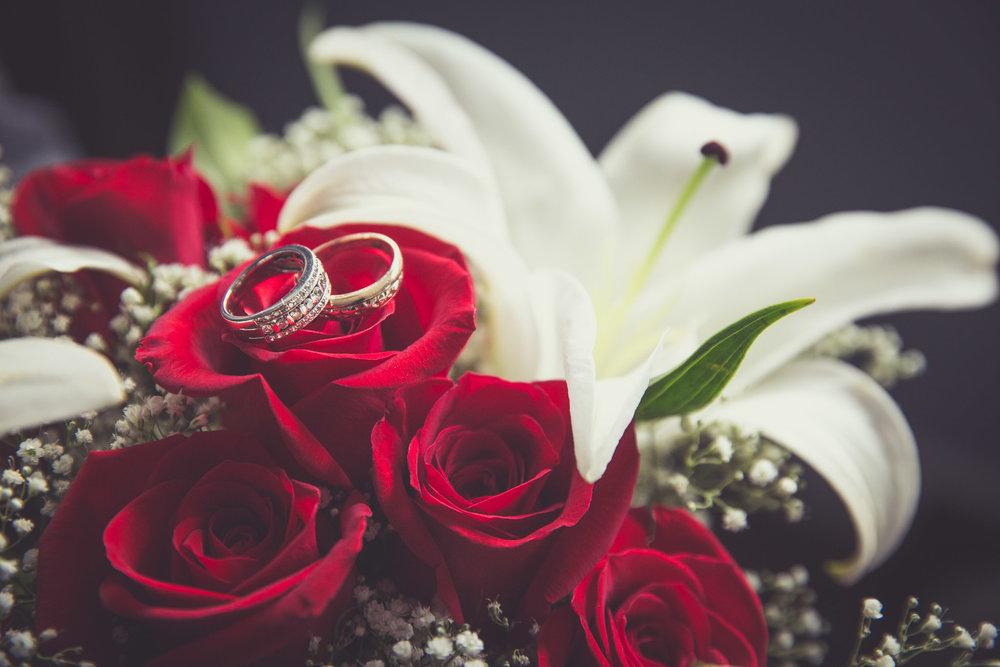 Geovanna-JP-wedding-shayne-gray-web-8454.jpg