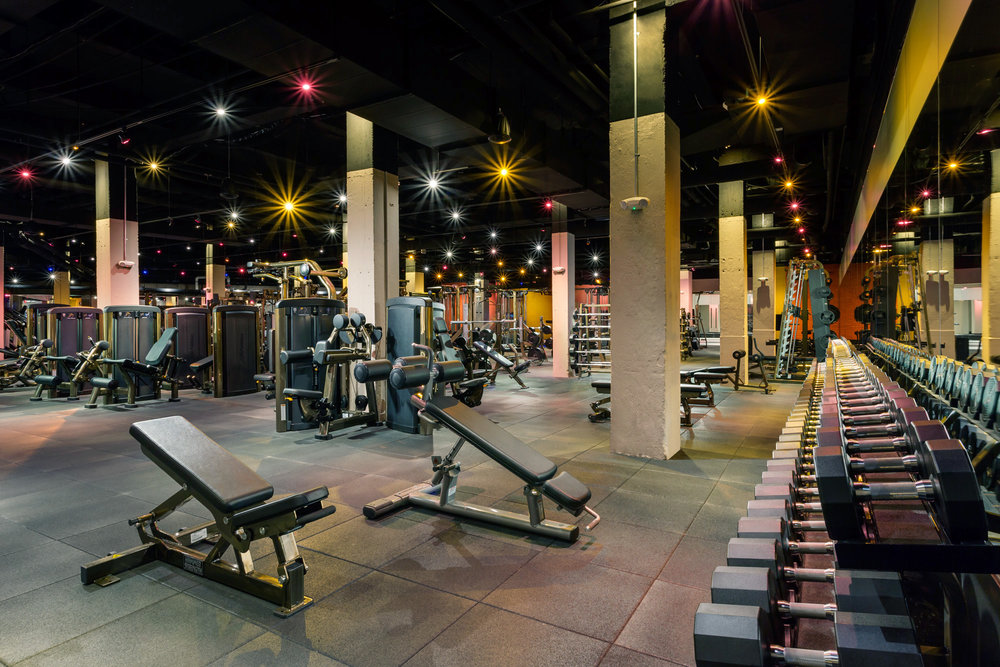 Fitness Final.jpg
