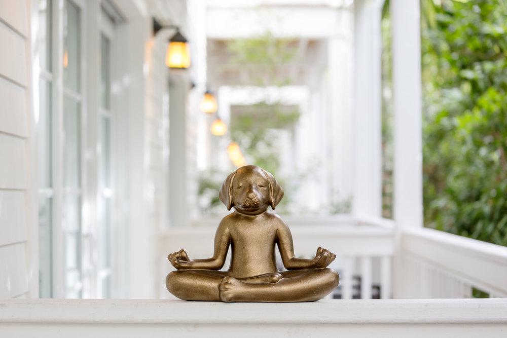 Marker-BuddhaDog.jpg
