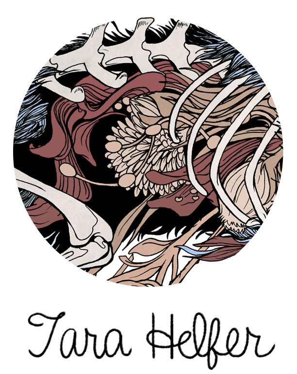 TARA HELFER - Illustration and Animation