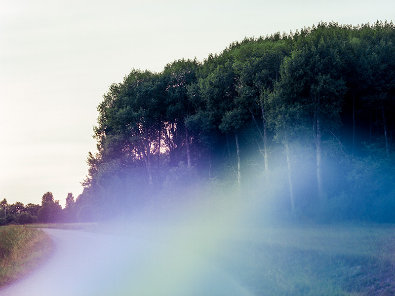 Colorful abstract photographic print of a forest in Sollentuna, Sweden, available on Minted.com