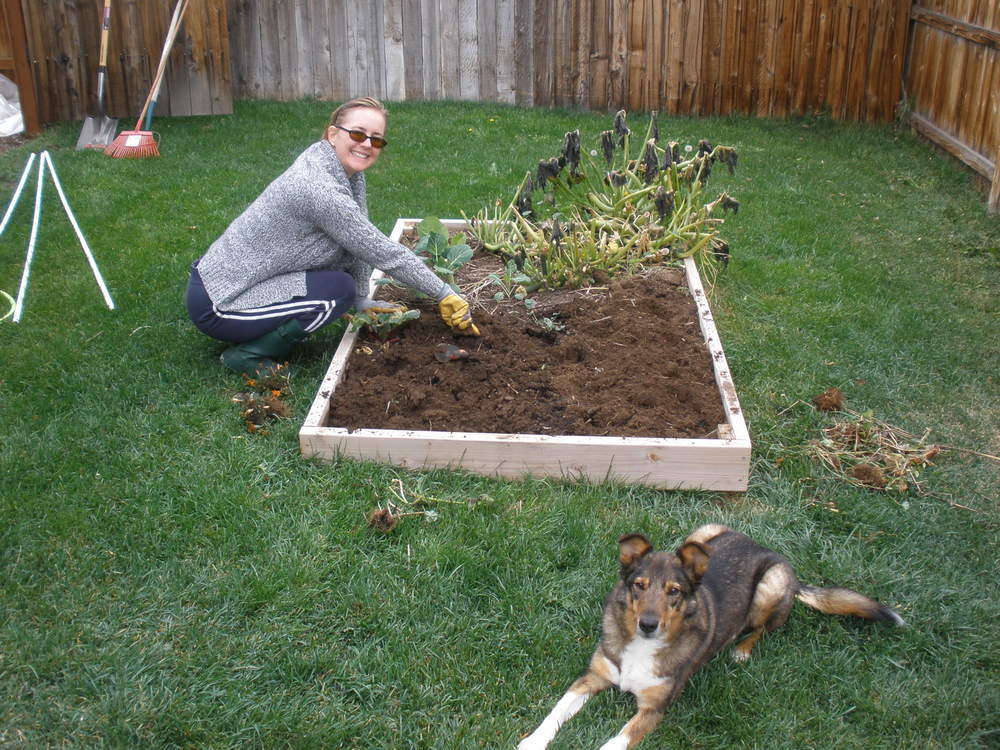 Putting the garden to bed: October 2010