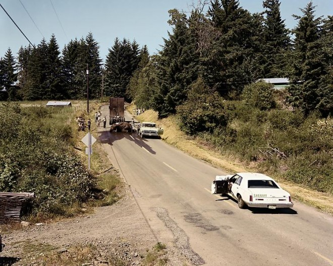 Joel Sternfeld, Exhausted Renegade Elephant, Woodland, Washington, June 1979