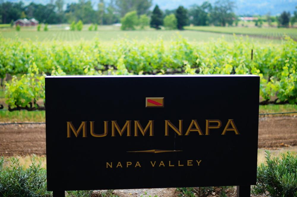 014_San Francisco_Wineries_Mumm Napa.JPG