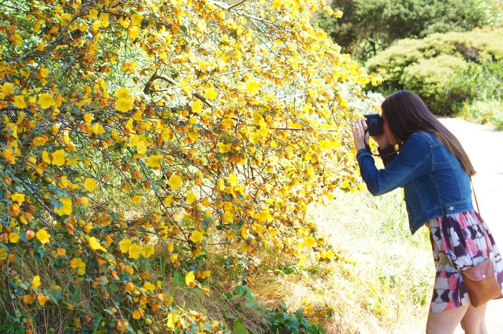 087_San Francisco_Botanic Garden.JPG