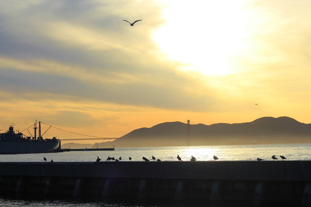 0110_San Francisco_Pier 39.JPG