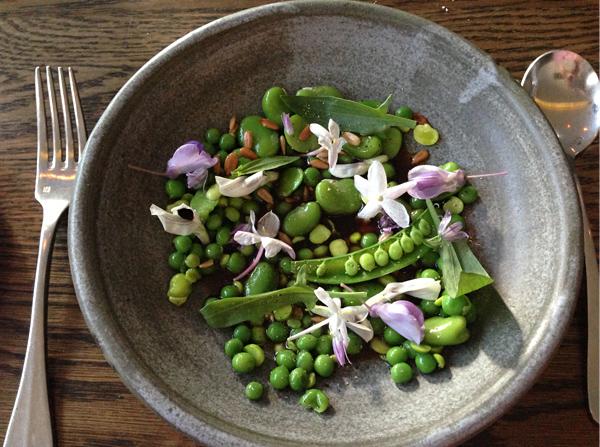 Peas & broad beans, sunflower seeds,onion & bergamot
