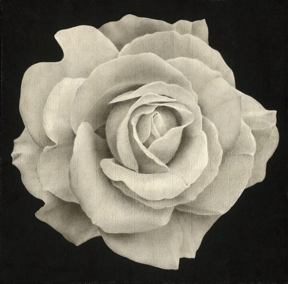 花花世界:夜玫瑰 60×60cm 2018 水墨紙本