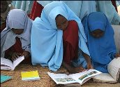kenya-camel-library-ii.jpg