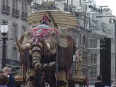 rs elephant 1.jpg