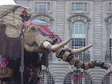 rs elephant 2.jpg