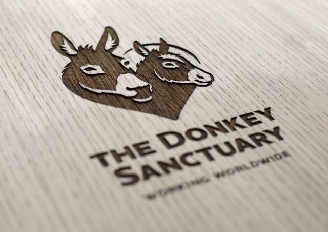 Donkey1_640.jpg
